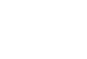 logo nz steel2x